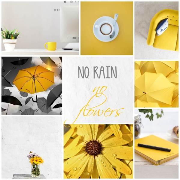 yellow_0529